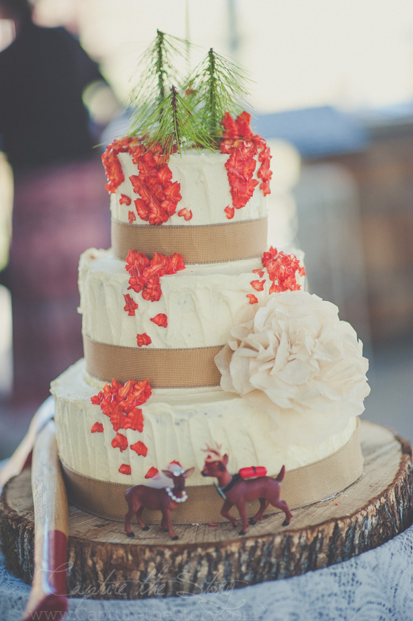 wedding cakes in redding ca drew story palo cedro ca wedding 24753